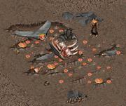 분출 된 고래
