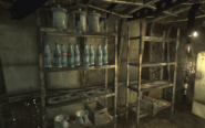 FO3 My Megaton house Pre-war theme Shelving