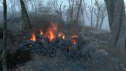 Fo4 Pile of Burning Tires