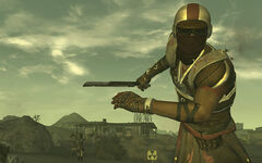 Caesarslegionmember