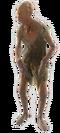 Fo4-feral-ghoul-roamer