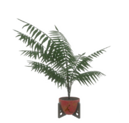 Fo4-red-potted-plant