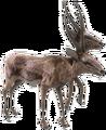 Gazelle-NukaWorld.png