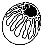 Icon deathclaw egg.png