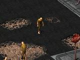 Фред (Fallout 2)