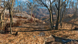 FO4 Dry creek bed