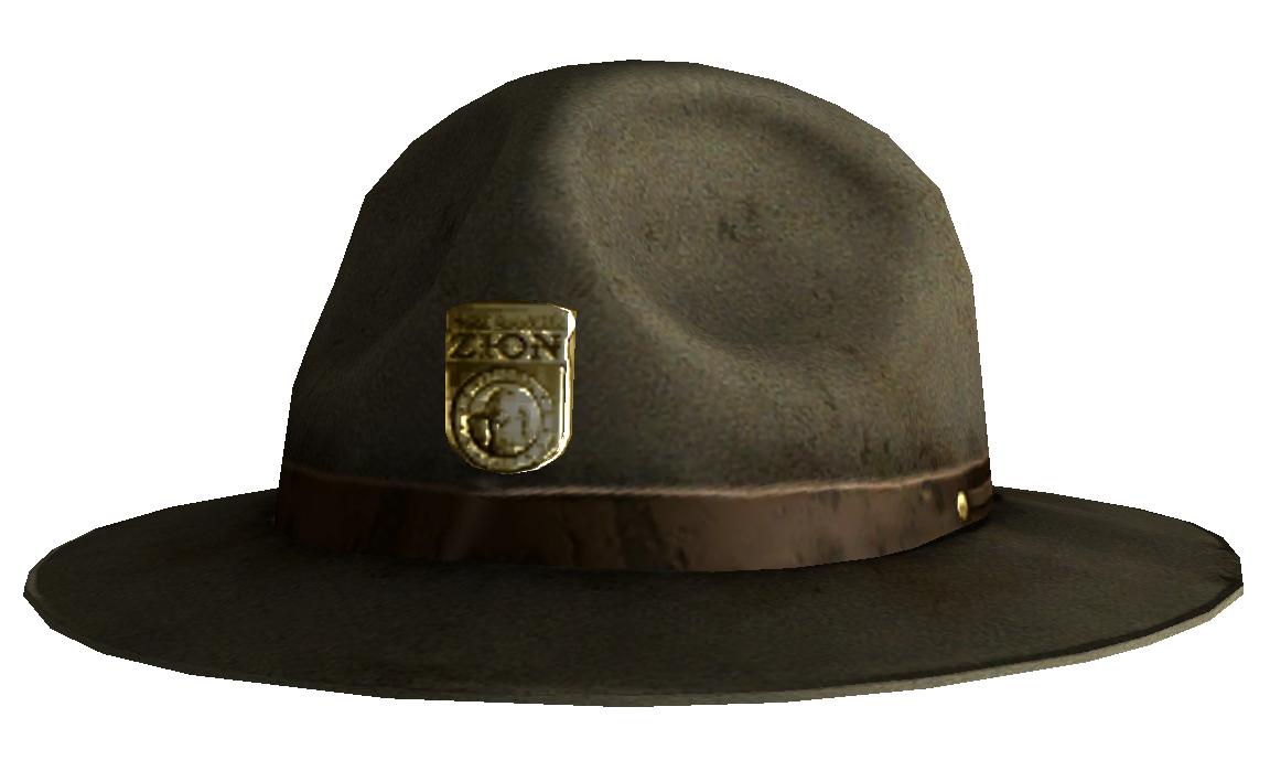 Park ranger hat  0806dd7b73c