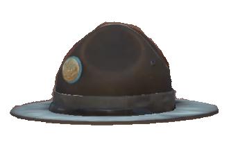 5a7c0aadff7 Campaign hat