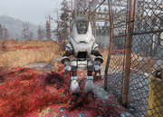 FO76 Insult Bot
