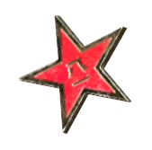 FO76 Red star pin