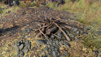 Meat-Cook Firewood stack