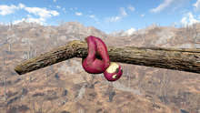 FO4NW Sloth1