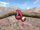 Сувенирный ленивец (Nuka-World)