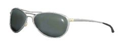 FO76 Patrolman sunglasses