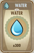 300 Water card