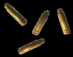 ShellCasing556mm