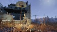 Abandoned bog town 06