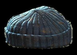 Gray knit cap