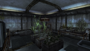 FNVOWB Plantas