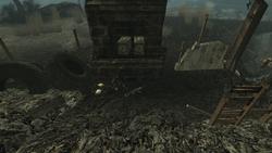 PL Skeleton in the lodge