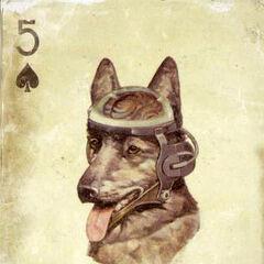 Колекційна картка Рекса (<i>Fallout: New Vegas</i>)