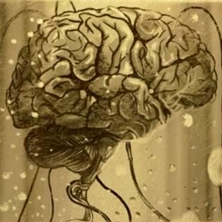 Мозок Барнакі, в одній з можливих кінцівок