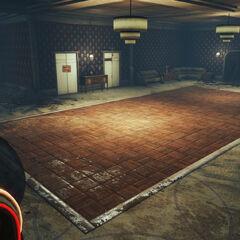 Ліфт до Сховища 118