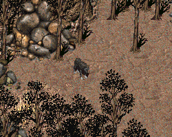 FO2 Smoke in the forest