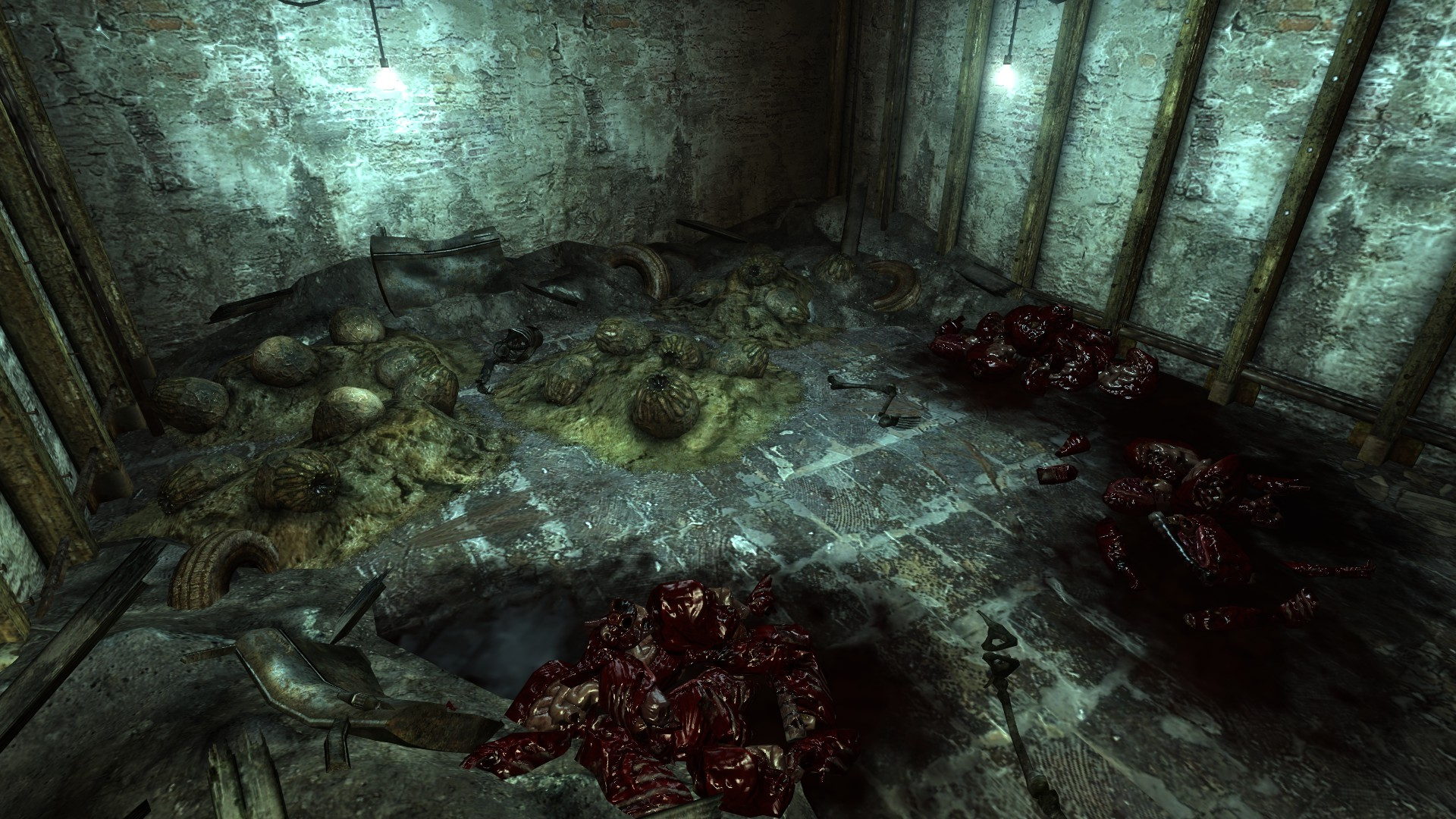 Image - Deathclaw eggs Old Olney underground.jpg | Fallout Wiki ...