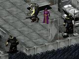 Lieutenant's guard