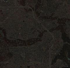 Boston map