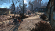 FO 4 Sunshine Tidings Co Op (1)