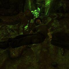 Спортивна сумка поряд з трупом найманця в дальньому кінці печери
