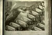 FoT cryonics slide