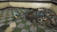 FO4 Spuckies cat