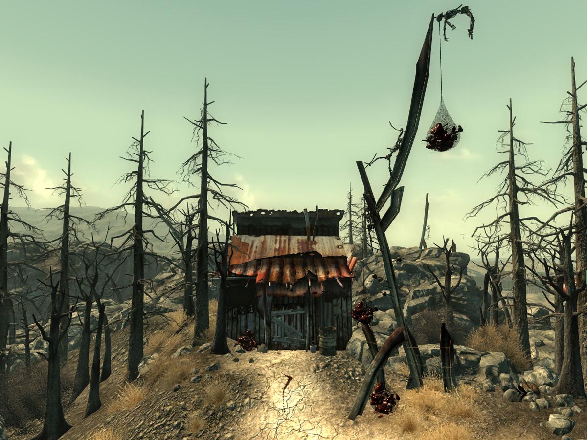 CS northeast shack.jpg