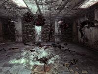 GT basement