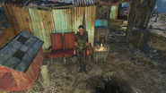 FO4 Walden pond Cat Merchant