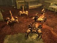Barkscorpions El Rey Motel