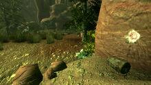 Survivalist hidden cache Angel cave