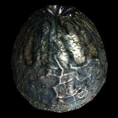 FNV radscorpion egg