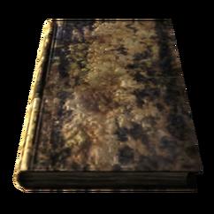 Ruined book