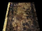 Small ruined book