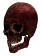 Mutilated skull.png
