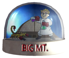 Snow globe big mt fallout wiki fandom powered by wikia snow globe big mt gumiabroncs
