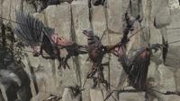 FO76WL Vulture corpse