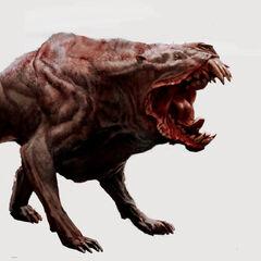 Mutant hound