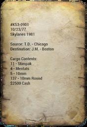 Skylanes 1981 Manifest