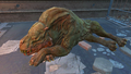 FO4FH Gracie.png