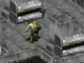 Fo1 Abel.png